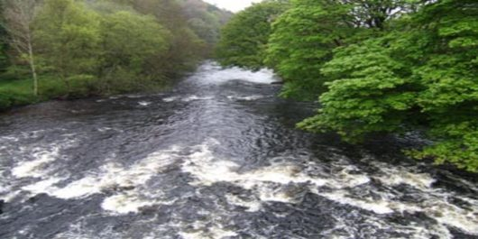 Key public consultations open on water quality launched by Government